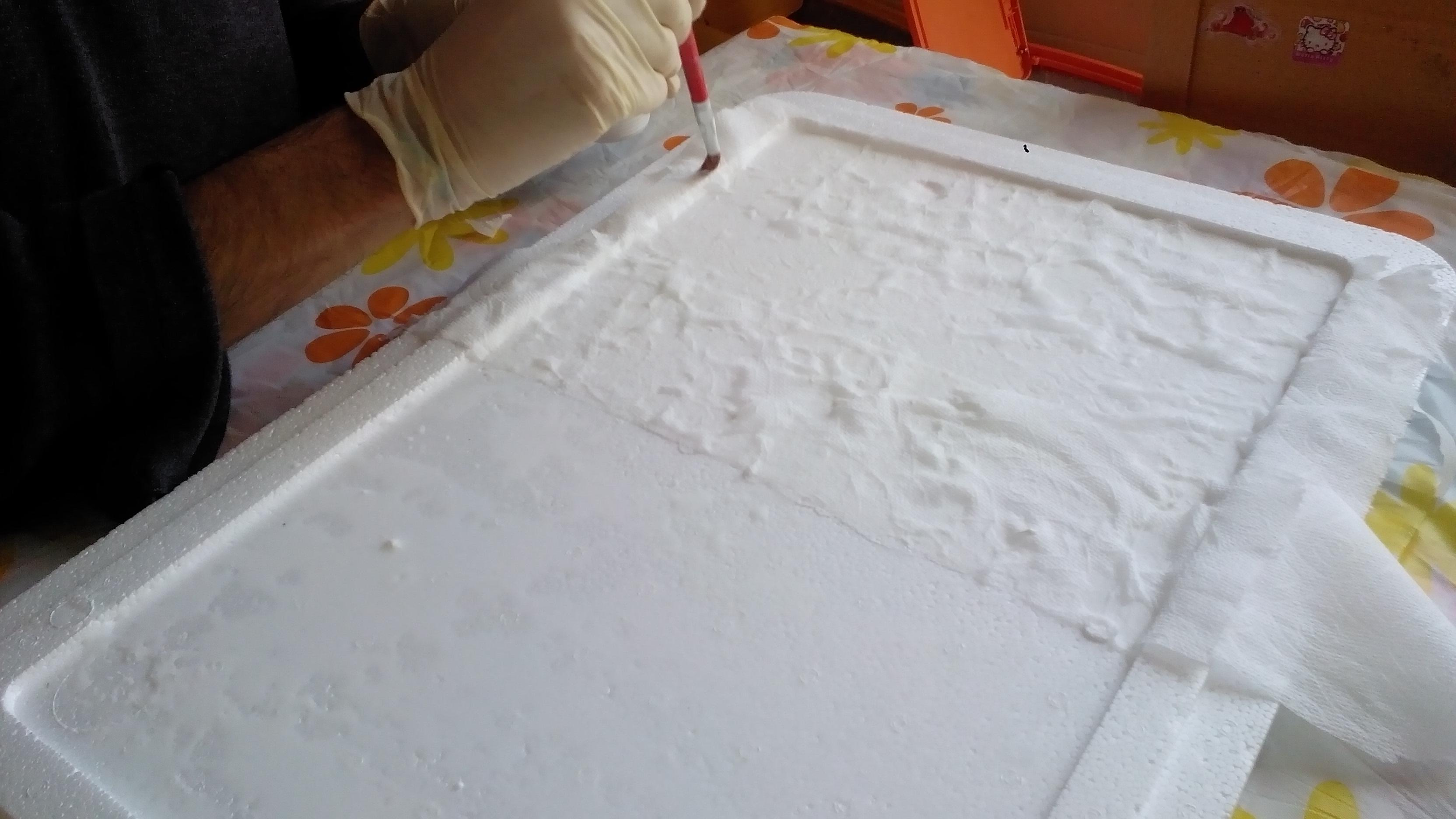 carta igienica con colla vinilica